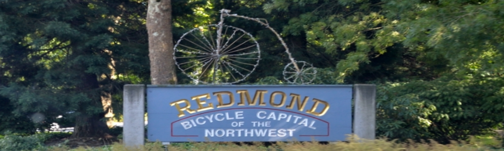 Redmond Insurance Agency